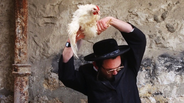 "50,000 birds are tortured by satanic jews in New York City each year for ""Kapparot """