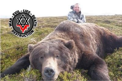 AnimalsBear8