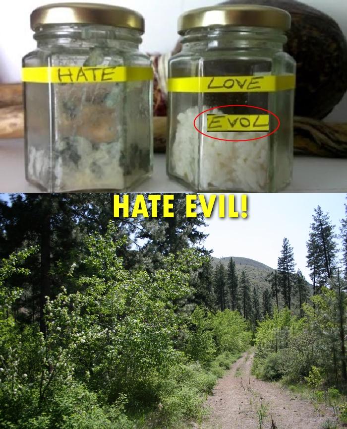 HateEvil